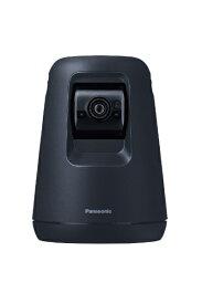 パナソニック Panasonic ホームネットワークシステム HDペットカメラ ブラック KX-HDN215-K [暗視対応 /無線]