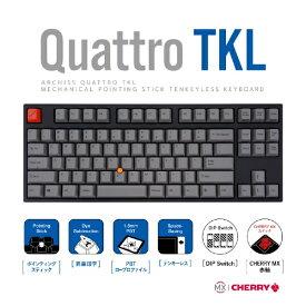 アーキサイト ARCHISITE AS-KBQ89/LRGB キーボード CHERRY MX 赤軸(英語配列) [USB /有線]