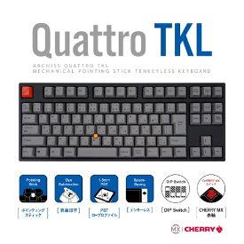 アーキサイト ARCHISITE AS-KBQ91/LRGBA キーボード CHERRY MX 赤軸 [USB /有線]