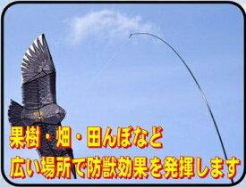 シンセイ Shinsei シンセイ まいっ鷹 シンセイ QNZH-1.8-4