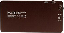 イワタテクノロジーリミテッド Iwata ジーニアス・スイート IWATA-Tech ブラウン GS01BRN