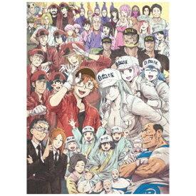【2021年08月25日発売】 ソニーミュージックマーケティング はたらく細胞BLACK 7 完全生産限定版【DVD】
