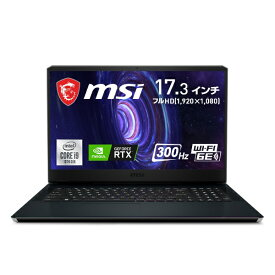 MSI エムエスアイ GE76-10UG-002JP ゲーミングノートパソコン GE76 Raider 10U チタニウムブルー [17.3型 /intel Core i9 /SSD:1TB /メモリ:32GB /2021年2月モデル]
