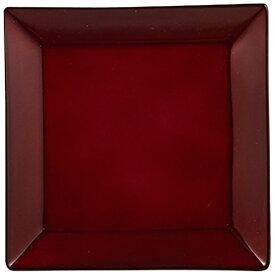 パール金属 PEARL METAL 漆器彩 クリーンコート角取皿 赤溜 赤溜 K-6126