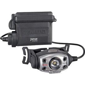 TJMデザイン タジマ LEDヘッドライトE421Dセット LE-E421D-SP