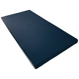 昭和西川 SHOWA NISHIKAWA ツインフォームマットレス ブルー [8×97×195cm]