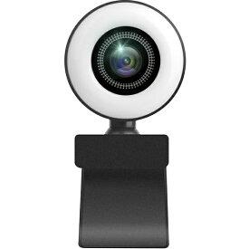 SUNEAST サンイースト SEW11-2K370WL ウェブカメラ マイク内蔵・LEDライト付 ブラック [有線]