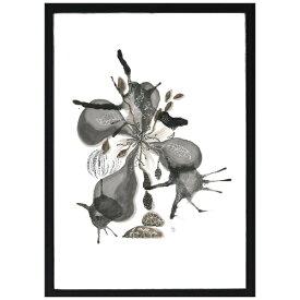 VIILA COLLECTION ビラコレクション ポスター付きフレーム 44×32×1.5cm ブラック 963427