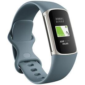 Fitbit フィットビット 【Suica対応】Fitbit Charge5 GPS搭載フィットネストラッカー L/Sサイズ スチールブルー FB421SRBU-FRCJK