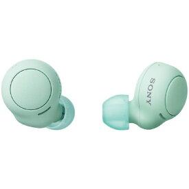 ソニー SONY フルワイヤレスイヤホン アイスグリーン WF-C500 GZ [マイク対応 /ワイヤレス(左右分離) /Bluetooth]