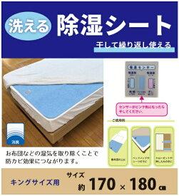 イケヒコ IKEHIKO 洗える除湿シート キングサイズ [170×180cm]