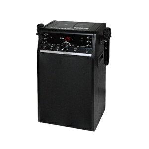 DVDカラオケシステム DVD-K110 ワイヤレスマイク 2本付 スピーカー内蔵 テレビ 接続 カラオケ 家庭用 機器