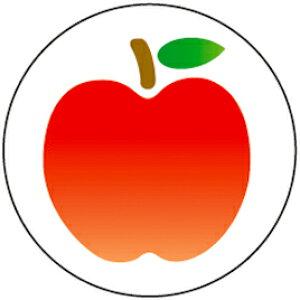 フルーツシール オレンジ【授業/小学校/ごほうびシール/学習シール/採点/教師/教員/先生用品/シール】