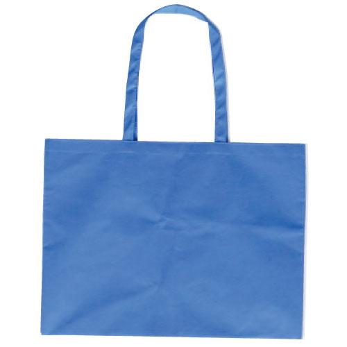作品収納バッグ大 不織布(マチ付)青 あす楽対象[メール便:80](スケッチ用具・イーゼル 多目的バッグ)