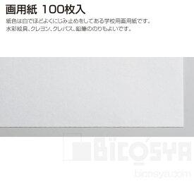 画用紙 100枚入 16切 182x257mm[メール便不可](描画材料 画用紙・木炭紙)