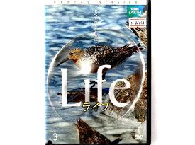 【邦画 中古DVD】地域発信型映画 あなたの町から日本中を元気にする! 第3回沖縄国際映画祭出品短編作品集 / 出演 陣内智則 他