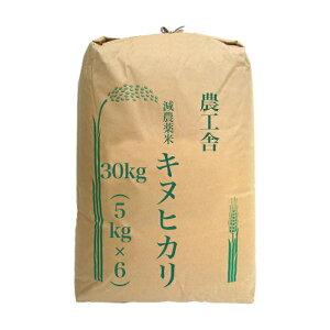 令和元年産 2019年産 滋賀産 キヌヒカリ 白米 30kg (5kg×6) 送料無料 精米無料 農家直送 減農薬米 低農薬 減化学肥料 湖北米 お米 西日本 近江米 100% おいしい きぬひかり 30kg 安心 安全 検査済