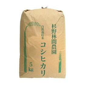 自然栽培の近江米コシヒカリ