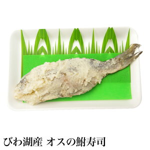 びわ湖産 オスの鮒寿司 ふなずし 1匹 スライスなし 天然ニゴロブナ 本漬け なれずし 30g ギフト 贈答 お中元 お歳暮 ふなずし 発酵食品 鮒ずし 鮒寿し ふな寿司 珍味 滋賀 漁師直送 産地直送