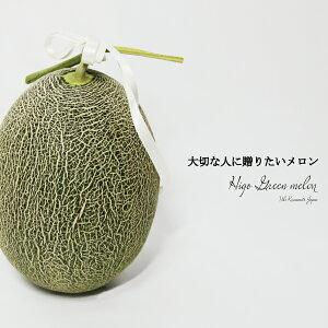 送料無料 熊本県産 肥後グリーンメロン 1玉 贈答用 贈り物 1.7〜2.3キロ以上 農家直送品 お中元 父の日 母の日 プレゼント