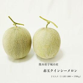 送料無料 熊本県産 クインシーメロン 赤肉 2玉 ギフト用 農家直送 贈答用 贈り物 母の日 父の日 02P05Sep15