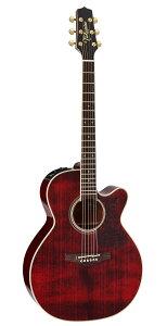 Takamine DMP551C WR エレクトリックアコースティックギター[メンテナンス無料] [お取り寄せ]