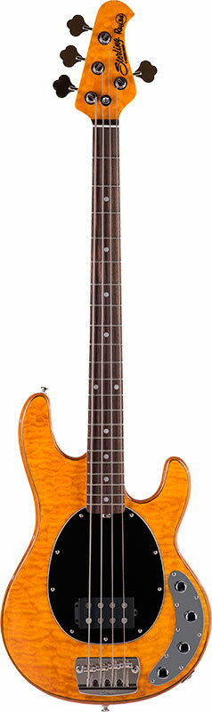 Sterling by MUSICMAN RAY34QM / Amber