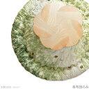 【日本製】直径245cm さくらのこたつ布団(掛け布団のみ) 【sakura グリーン】 桜 円形 円型 丸型 こたつ掛け布団 コタツ布団…