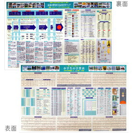 デスクマット No.12 小学生の学習表&未来のお仕事マップ 学習机用 送料無料