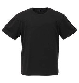 Phiten 2Pクルーネック半袖Tシャツ 大きいサイズ メンズ ビッグサイズ メンズファッション 3L4L5L6L8L 大きいサイズの服 専門店 大きなサイズ ビックサイズ 超特大 黒無地 肌着 下着 ファイテン 吸汗速乾  メッシュ