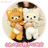 ◇ rilakkuma laid back cat Tama knackered dakimakura-rilakkuma and korilakkuma set MP87701/MP87801