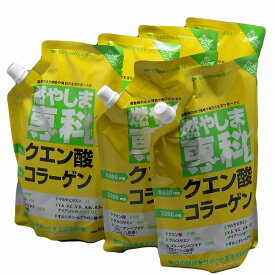 燃やしま専科 レモン風味(500g)×6個