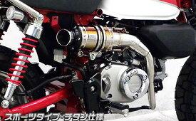 アップマフラー スポーツタイプ チタン仕様 ウイルズウィン(WirusWin) モンキー125(2BJ-JB02)