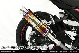 スリップオンマフラー スポーツタイプ チタン仕様 ウイルズウィン(WirusWin) Ninja250(ニンジャ250)2BK-EX250P