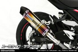 スリップオンマフラー ユーロタイプ チタン仕様 ウイルズウィン(WirusWin) Ninja250(ニンジャ250)2BK-EX250P