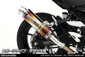 スリップオンマフラー スポーツタイプ チタン仕様 ウイルズウィン(WirusWin) Ninja400(ニンジャ400)2BL-EX400G