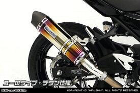 スリップオンマフラー ユーロタイプ チタン仕様 ウイルズウィン(WirusWin) Ninja400(ニンジャ400)2BL-EX400G