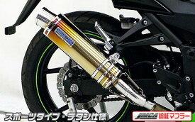 Ninja250R(ニンジャ)JBK-EX250K スリップオンマフラー スポーツタイプ チタン JMCA認証 ウイルズウィン(WirusWin)