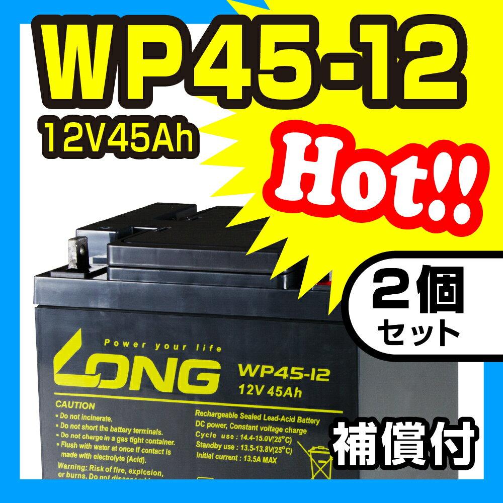 WP45-12 【2個セット】【12V45Ah】 UPS・防災・防犯・シニアカー・セニアカー・システム等多目的バッテリー LONGバッテリー バイクパーツセンター