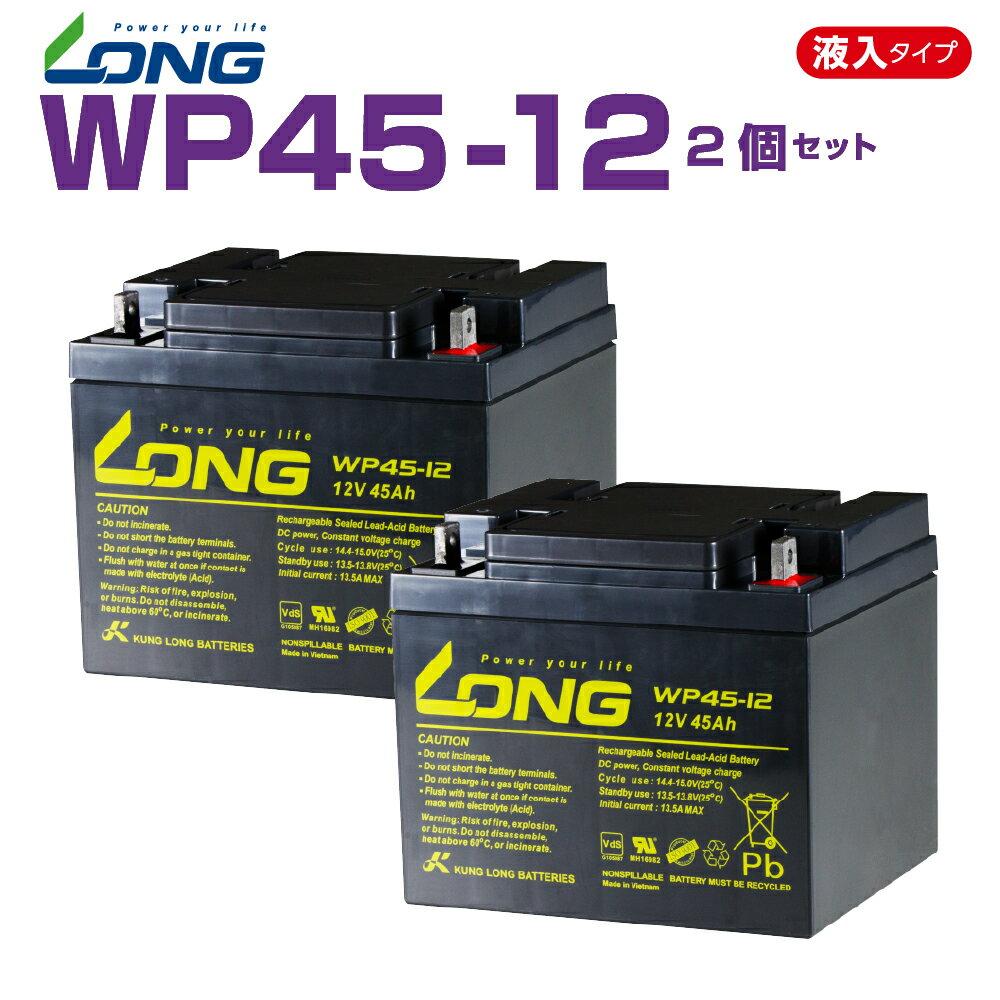 WP45-12  2個セット  12V45Ah  UPS・防災・防犯・シニアカー・セニアカー・システム等多目的バッテリー LONGバッテリー バイクパーツセンター