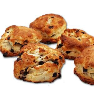 生クリームスコーン(チョコ×くるみ)5個入り【BIKKEセレクト】 /(fresh milk scone)