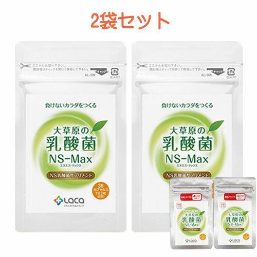 大草原の乳酸菌(NS-Max×2袋セット)さらに(8粒サンプル×2袋付き)【楽天ポイント10倍】【送料無料】乳酸菌 サプリメント/年齢を重ねるにつれて減っていく善玉菌、増えていく悪玉菌。【36カプセル×2袋】◇NS-Max001 目玉