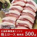 送料無料 天然猪 焼肉用 特上ロース肉 500g お子様にも食べやすい柔らかさ 広島県福山産 猪肉 いのしし肉 イノシシ肉 …
