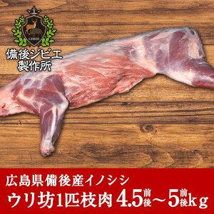 熟成 猪肉 ウリ坊 1匹 枝肉 (3〜4kg) 広島県産 備後地方 いのしし肉 イノシシ肉 ぼたん鍋 牡丹鍋 ボタン鍋 最高級 ジビエ料理 お取り寄せ 人気 鍋セット お鍋 すき焼き ステーキ しゃぶしゃぶ