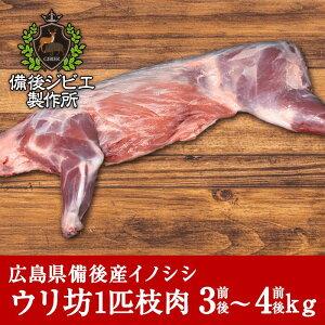 送料無料 天然猪 ウリ坊 枝肉 約3~4kg前後 半枝2本分 広島県産 備後地方 いのしし肉 イノシシ肉 ぼたん鍋 牡丹鍋 ボタン鍋 最高級 ジビエ料理 お取り寄せ 人気 鍋セット お鍋 すき焼き ステー