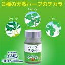 桑の葉・オリーブ葉・ヤーコン葉の3種の天然ハーブのチカラで、しっかり糖対策!ハーブスカット【送料無料】【10P12Oct15】