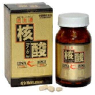 Nucleic acid 1200