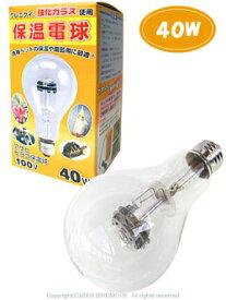 アサヒ / 保温電球 40W / 9990261 ( BIRDMORE バードモア 鳥用品 鳥グッズ 鳥 とり トリ インコ 文鳥 コザクラ ヨウム オウム プレゼント )