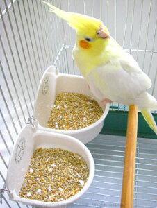 仙台小鳥のクリニック / HighQualityフィードカップ・大型 / 9992762 ( 鳥 インコ オウム えさ エサ 入れ 餌入れ )