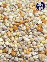 八木さんの磨き餌 1000g / 9993298 ( BIRDMORE バードモア 鳥用品 鳥グッズ 鳥 とり トリ エサ 餌 フード おやつ ごはん インコ 文鳥 …